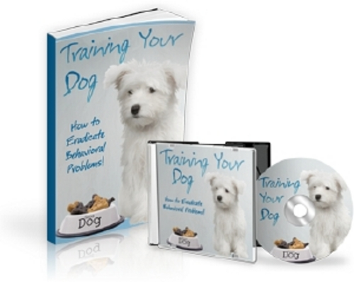 Product picture Training Your Dog Audio Ebook - MRR